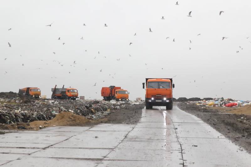 Власти Поморья получили отсрочку по мусорному полигону в Рикасихе