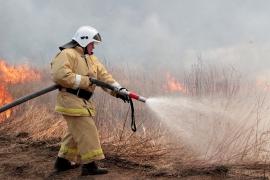 Свалка лесопилки горит в Архангельской области