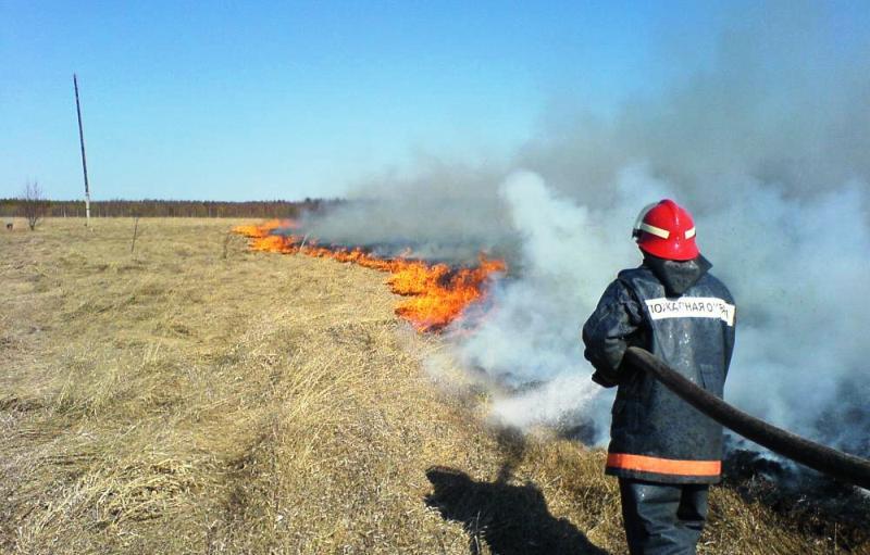 В Архангельской области продолжают гореть бани, мусор и сухая трава