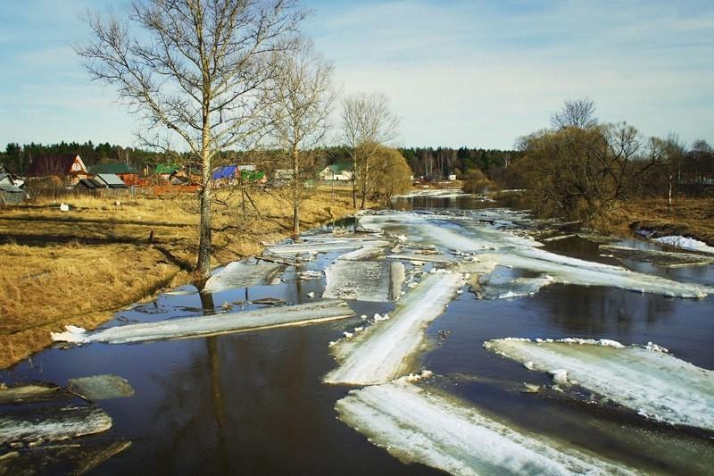 Картинки река весной для детей, днем