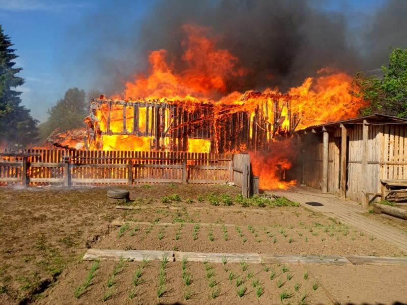Каргополь от огня удалось отстоять