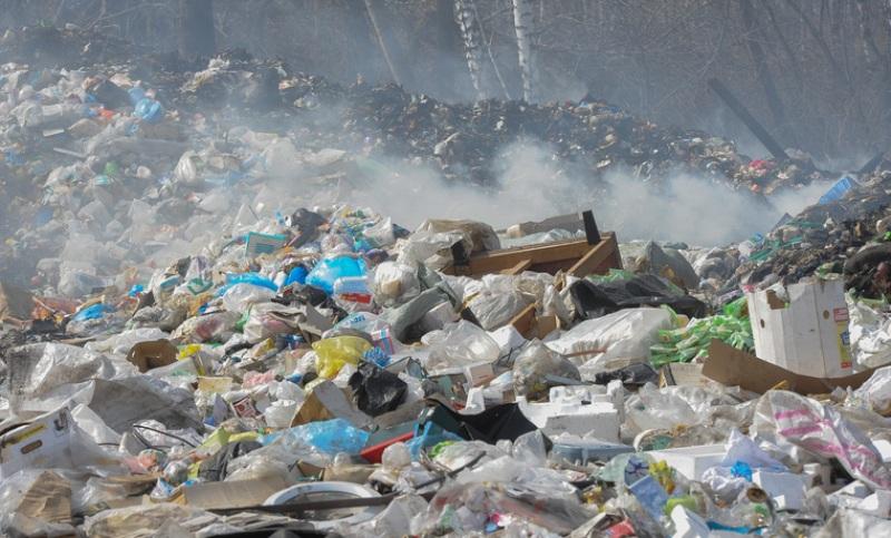 Свалки Архангельской области не соответствуют санитарным требованиям
