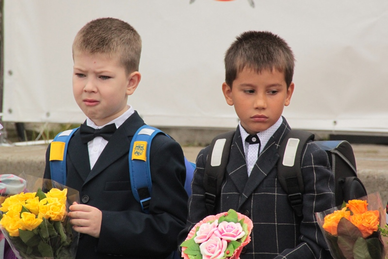 Реформа школы государству не нужна