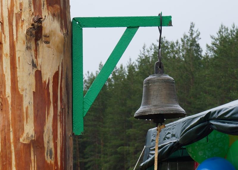 В Архангельской области директор агрофирмы осужден за кражу леса