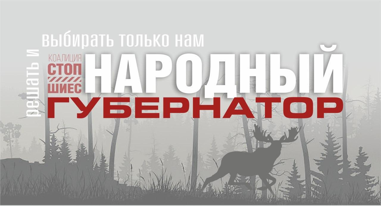 Выборы народного кандидата в губернаторы Поморья стартовали в сети Интернет