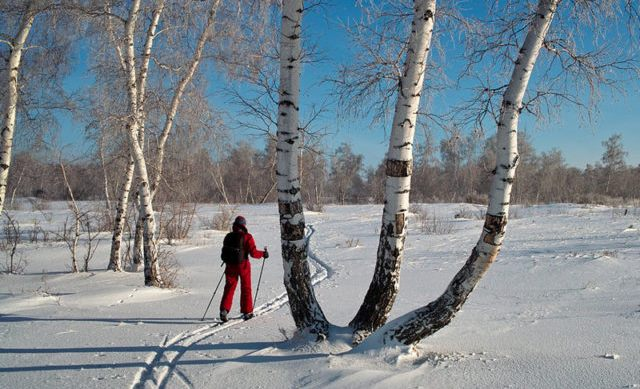 В Малиновку прямо из Германии заехал лыжник