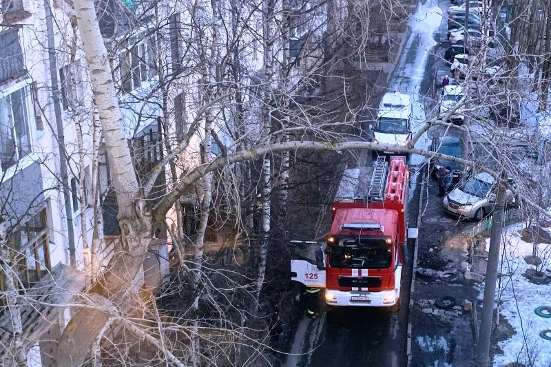 В Архангельске убили и сожгли трех женщин