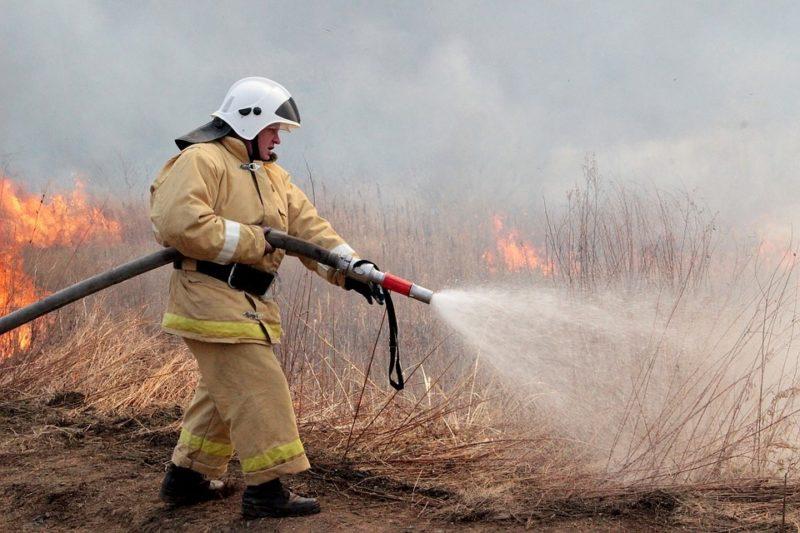 В Архангельской области растёт число возгораний мусора и сухой травы