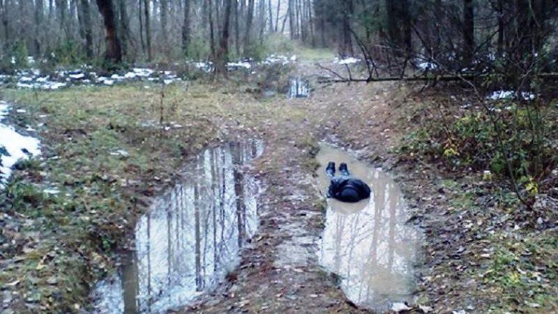 В Красноборском районе двое приятелей утопили в луже третьего